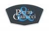 Company Logo For Plevin & Gallucci Company, L.P.A.'