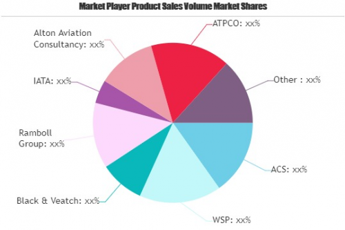 Aviation Consulting Service Market'