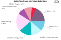 Natural Gas Market SWOT Analysis by Key Players: Apache, Che