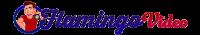 Flamingo Video Logo