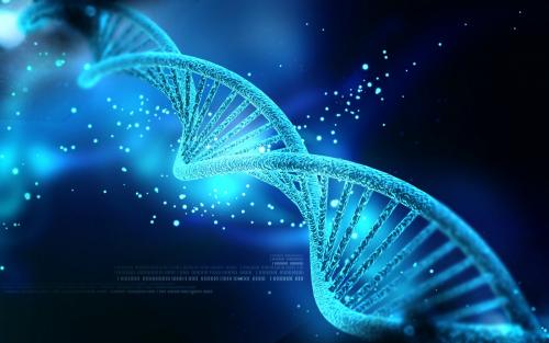 Histone Deacetylase Inhibitors Market'