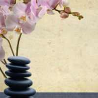 Strongsville Massage Therapy Logo