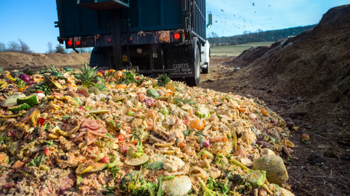 Food Waste to Energy Market'