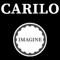 Alquiler Casa Carilo Imagine Logo