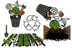 Wet Waste Management Service'