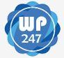 WePromote247.com Logo