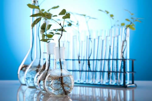 Agricultural Biologicals Market'