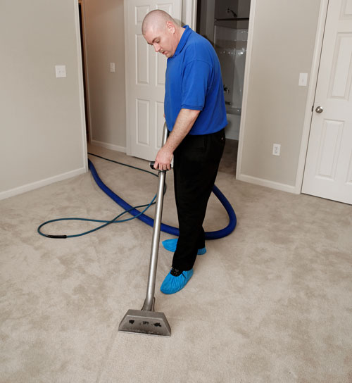 Steam Carpet Cleaning North York ON'