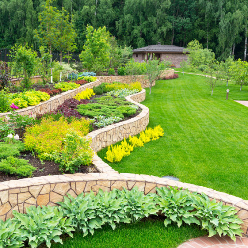 Best Wholesale Plant Nursery'
