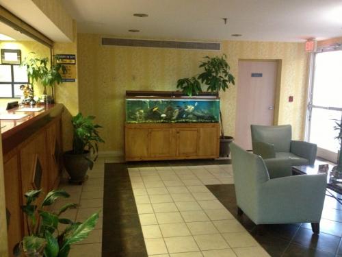 Hotel'