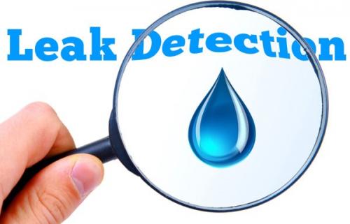 Company Logo For I Got Plumbing Leak Detection San Juan Capi'