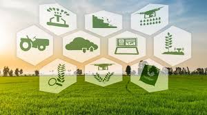 E-Commerce of Agricultural Products Market'