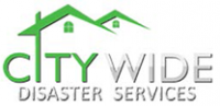 Citywide Disaster Logo