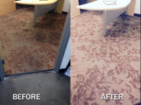 Pro Green Carpet Cleaning Services in Irvine CA Logo