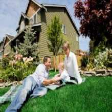 Lawn Maintenance'