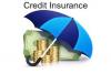 Credit Insurance Market'