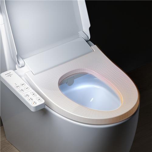 Smart Toilet Seats'
