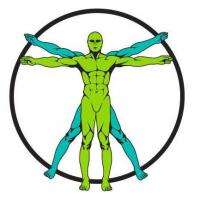 Evolve Training Systems Logo