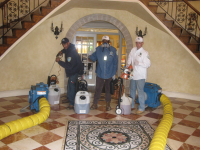 NYC Mold Inspection Services