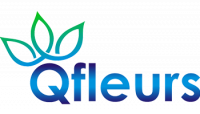Qfleurs.fr - Online Gifts Shop Logo