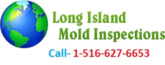 Long Island Mold Removal'