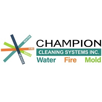 Company Logo For Champion Cleaning Systems'