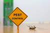 Pest Control Manly QLD
