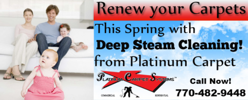 Platinum Carpet Systems'