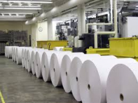 Paper and Pulp Market To Witness Huge Growth With Projected