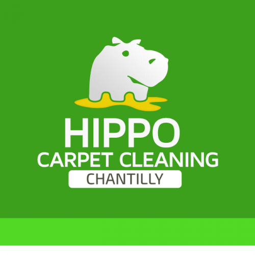 Company Logo For Hippo Carpet Cleaning Chantilly'