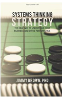 Systems Thinking Strategy'