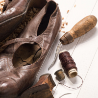 Browns Shoe Fit Co Logo