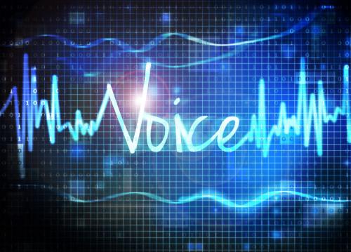 Voice Biometrics'