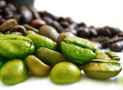 green coffee bean extract'