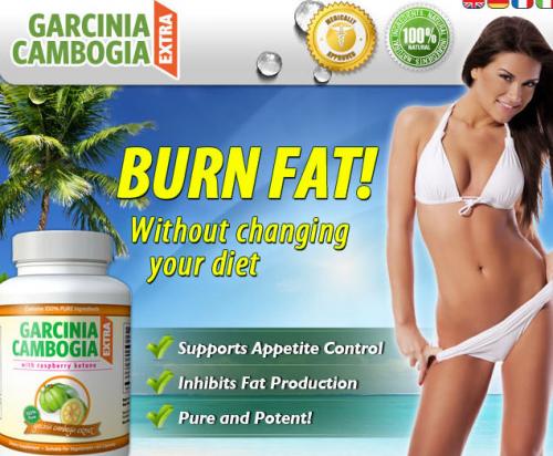 Garcinia Cambogia Extra Reviews'