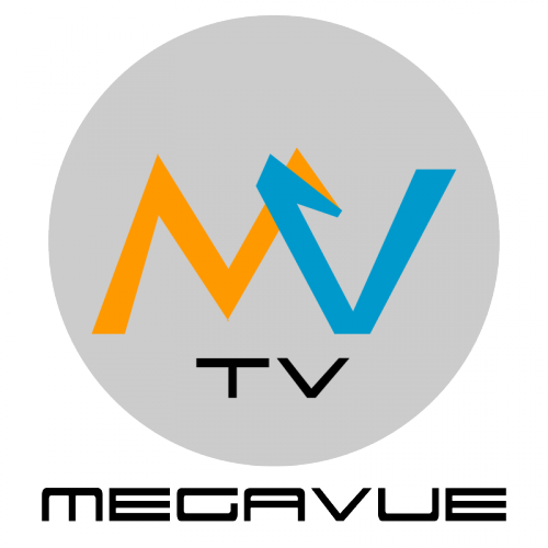 Company Logo For Business Growth Strategies Inc / MEGAVUE TV'