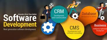 Software Development Service Market'