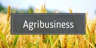 Agribusiness Market'