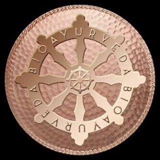 Company Logo For BIOAYURVEDA'