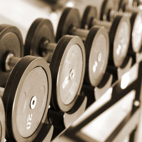 Physical Fitness Facilities'
