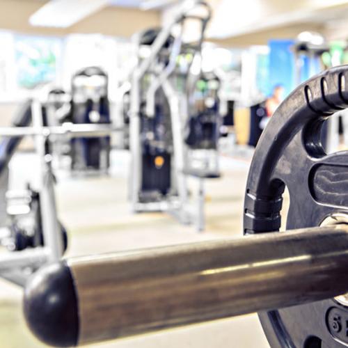 Gym Program'