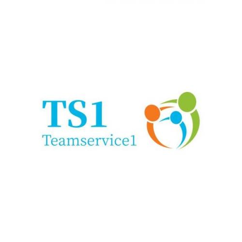 Company Logo For TS1 Insurance'