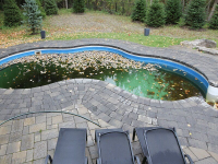 Professional Pool Builders Fairfax VA Logo