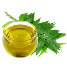 Neem Oil Market to See Huge Growth by 2026 : Margo, Agro Ext'