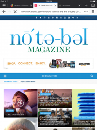 Notebel Magazine
