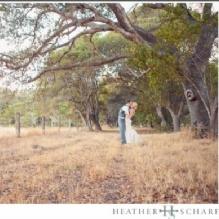 Wedding Venue Selection'