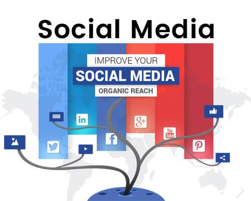 Social Media Marketing Company Services'