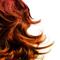 George's Hair Studio Logo