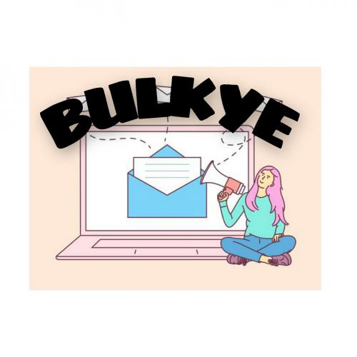 Company Logo For BULKYE'