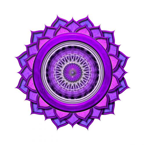 Company Logo For Yoga Nisarga - Yoga Teacher Training'